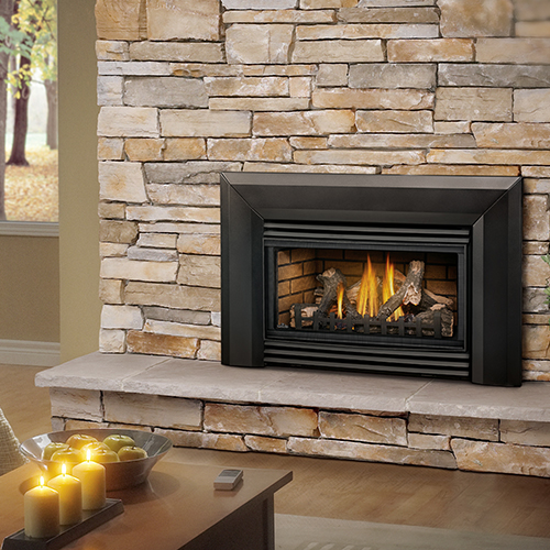 roxbury 30 gas fireplaces insert